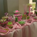 130x130 sq 1334864481709 ssweddingreceptionpinkandgreen
