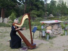 Harp Accents-Mary Ellen Holmes photo