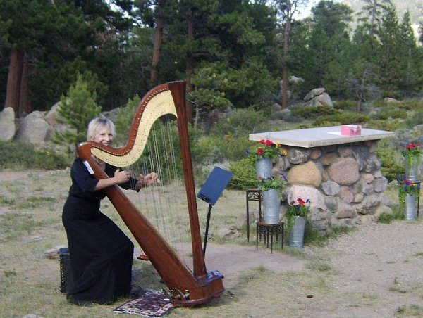 photo 1 of Harp Accents-Mary Ellen Holmes