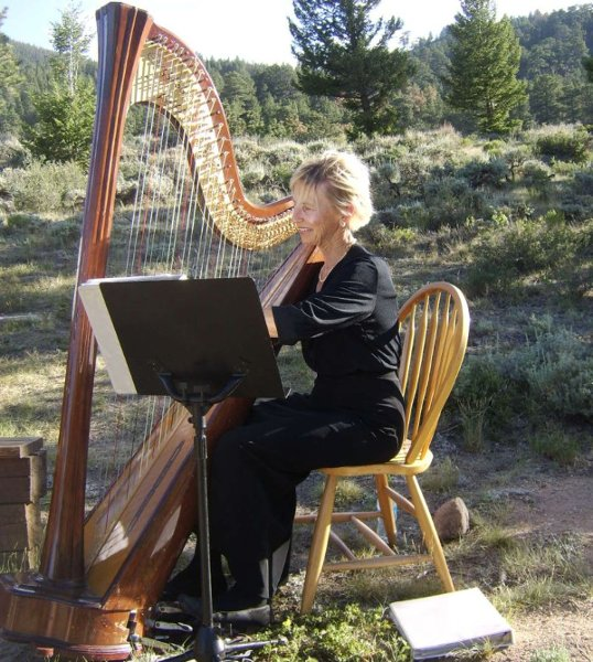 photo 4 of Harp Accents-Mary Ellen Holmes