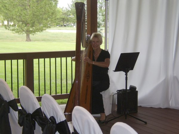 photo 7 of Harp Accents-Mary Ellen Holmes