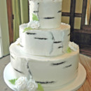 130x130 sq 1421262433265 birch bark with ferns wedding cake