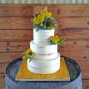 130x130 sq 1449605766964 naked wedding cake