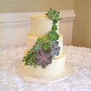 130x130 sq 1467469401144 succulents wedding cakecropped