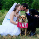 130x130 sq 1462449468 5c9145631936407e bride groom kiss dog love sign nc