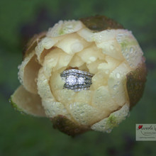 220x220 sq 1455405059881 wedding ring inside flower rain lake nc