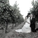 130x130 sq 1395955530351 asti   bride and groom kissing in vineyar
