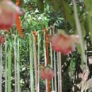 130x130_sq_1407351485901-ashleyflowers5