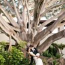 130x130 sq 1427475432247 16 ln tree dip