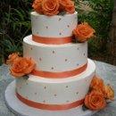130x130 sq 1339132463696 orangeweddingcake