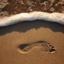 130x130 sq 1380035001316 footprint in sand