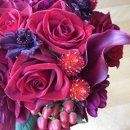 130x130_sq_1364310424209-purplecloseup