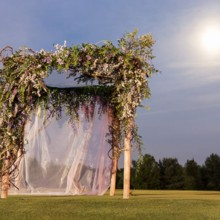 220x220 sq 1479400854530 romantic moonlit wedding arbor