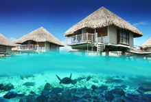 220x220 1489604680425 1489604670119 mer1905ed 112927 over water bungalow