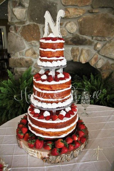who makes wedding cakes in jackson ms cakes by tina photos wedding cake pictures mississippi 27442
