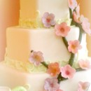 130x130_sq_1365110831537-octagonal-fondant-wedding-cake-with-cherry-blossom-branch