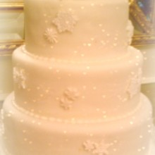 220x220 sq 1365110892666 snowflake wedding cake