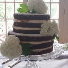 220x220 sq 1404062298852 naked wedding cake with hydrangeas
