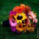 130x130 sq 1361125185942 bridalbouquetsunflower