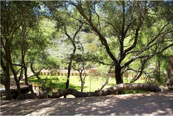 1346000516587 Oak20  Topanga wedding venue