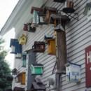 130x130 sq 1475156696803 birdhouses