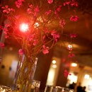 Beautiful Modern Orchid Centerpieces by Botanicals, Inc. http://www.botanicalschicago.com/ Photo by Kevin Weinstein Photography