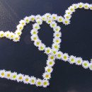 130x130 sq 1372441273409 daisy hearts