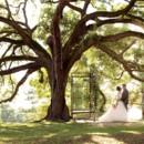 130x130 sq 1473708658364 tree