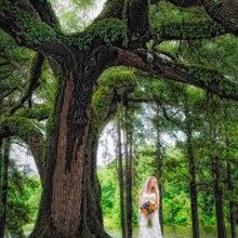 220x220 sq 1473708575105 bridal shots under tree