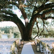 220x220 sq 1473708576574 ceremony live oak tree