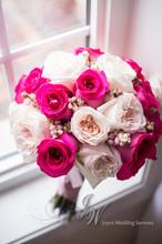 220x220 1424642259380 242 blush garden rosespink roses rhythmphotography
