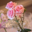 130x130 sq 1421277280967 wedding chris and meryl 232