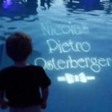 220x220 sq 1448914612490 pool gobo