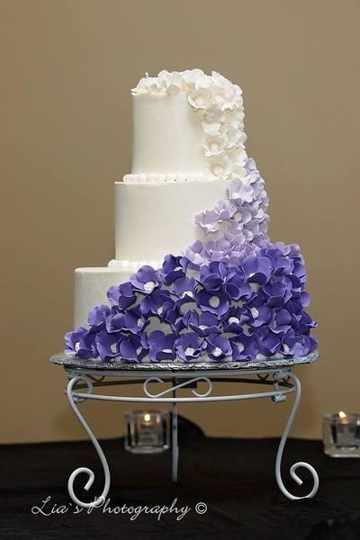 sue jacobs cakes gilbert az wedding cake