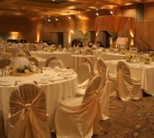 Julie's Chair Covers photo