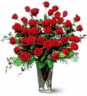 220x220 1312828862733 roses