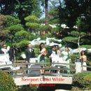 130x130 sq 1224577775404 japanesegarden longbeach08009