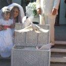 130x130 sq 1228037318776 wedding12 12 09001