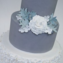 220x220 sq 1481306313053 gray garden wedding cake