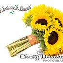 130x130 sq 1281539158012 sunflowersffsept092193lrcwff