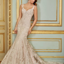 220x220 sq 1492788656344 117288 wedding dresses 2017 510x680