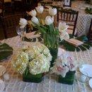 130x130 sq 1266606935393 tulips