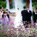 130x130 sq 1358828115717 wedding185