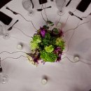 130x130_sq_1306856803223-greenandpurplecenterpiece