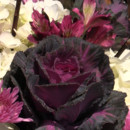 130x130 sq 1402706934033 ceremony flowers