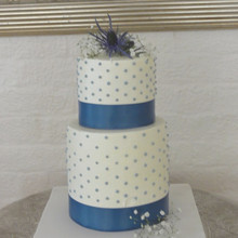 220x220 sq 1375373613387 blue dot wedding cake copy