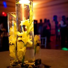 The Rented Event Event Rentals Atlanta Ga Weddingwire