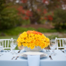 130x130 sq 1366046859320 outsidespringweddingtabledecor