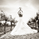130x130 sq 1403049461665 silver horse winery wedding  town country studios