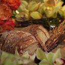 130x130_sq_1353456942172-breadandflorals